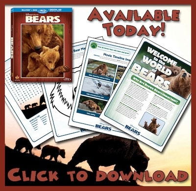 Disneynature's BEARS Activity Sheets Available Now