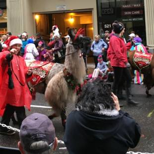 29th Annual My Macy's Holiday Parade in Downtown Portland