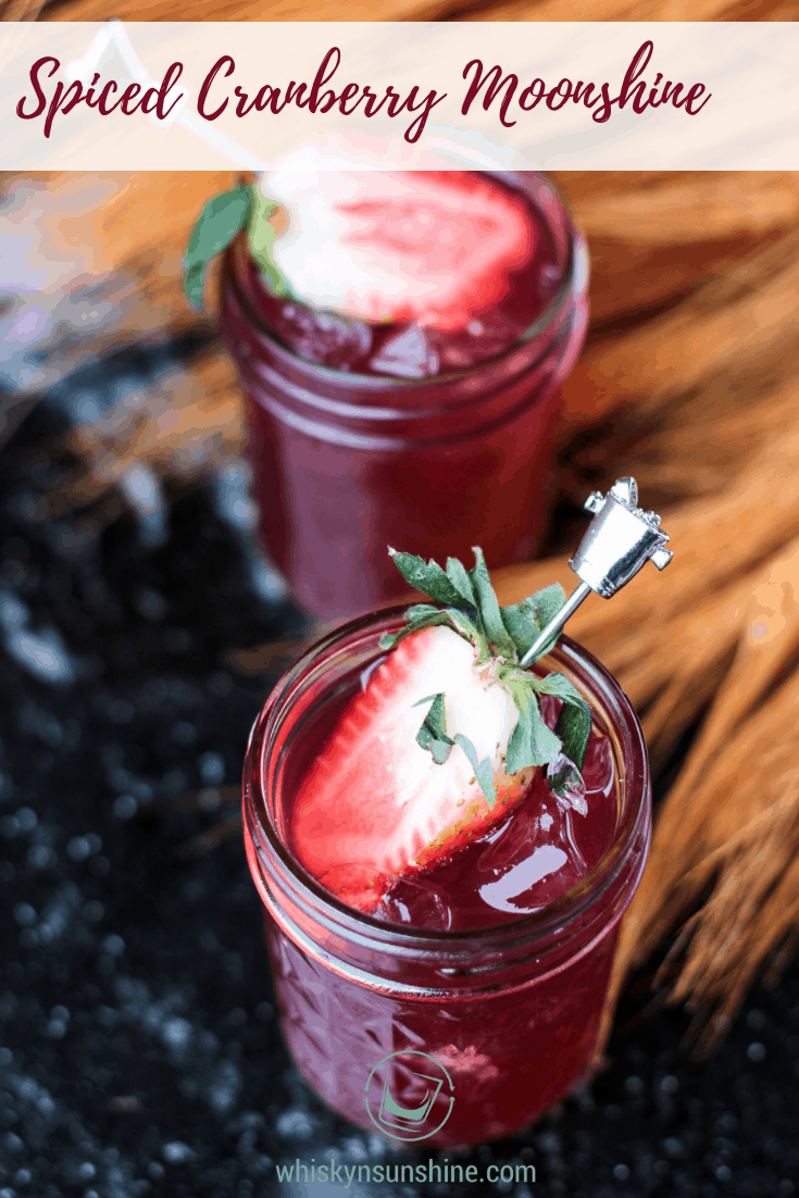 Spiced Cranberry Moonshine