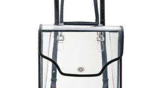 Margo Paige Clear Backpack