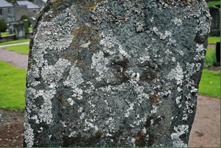 Pictish Stone 2