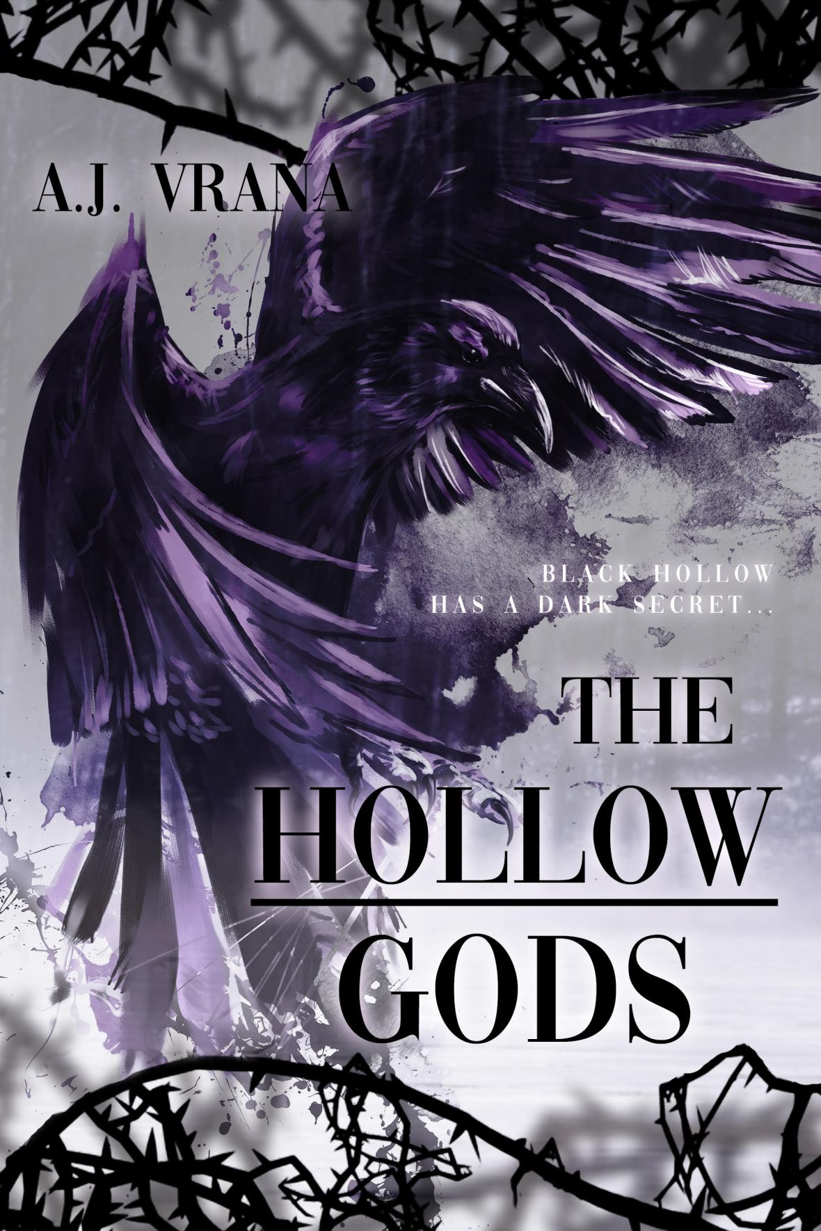 The Hollow Gods by A.J. Vrana
