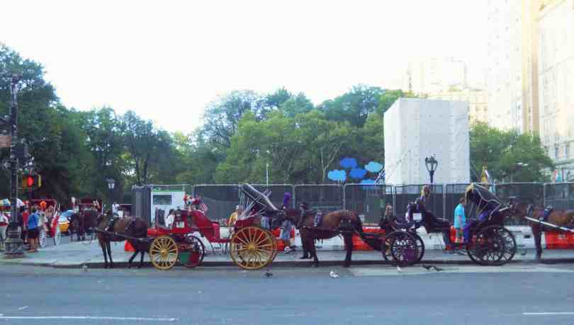 Carriages Central Park