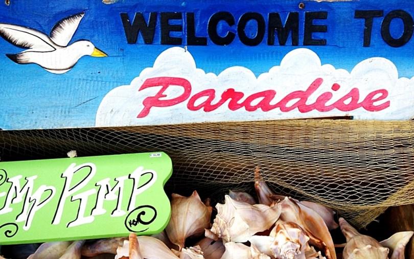 19 things to do in Virginia Beach