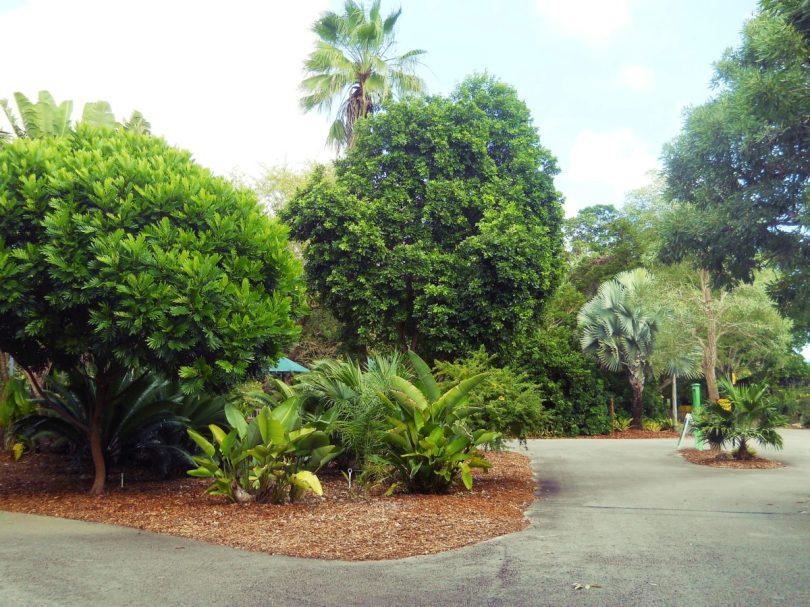Zoo Miami Florida