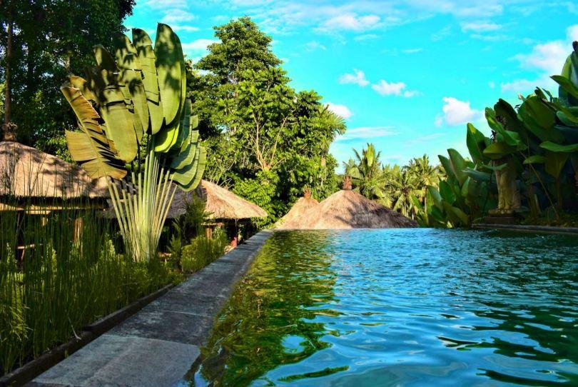 Bali Ubud pool