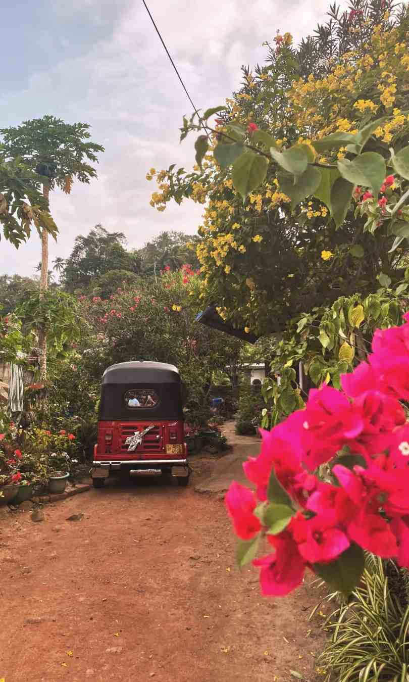 Sri Lanka 7 day itinerary