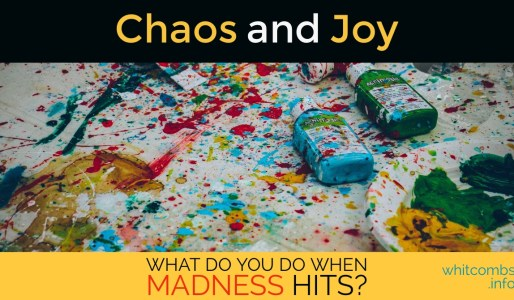Chaos and Joy: What To Do When Madness Hits