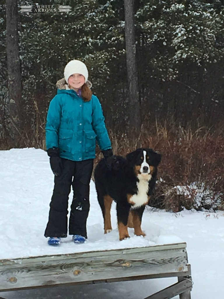 Snow Day, Lands End Winter Clothes, Bernesse Mountain Dog