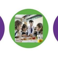 Reach Out: Free Science CPD for Primary Teachers