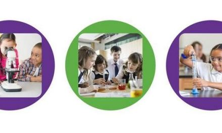 Reach Out CPD : A new free resource to support Primary Science