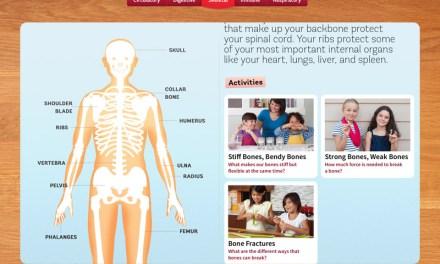 The DIY Human Body App for IOS