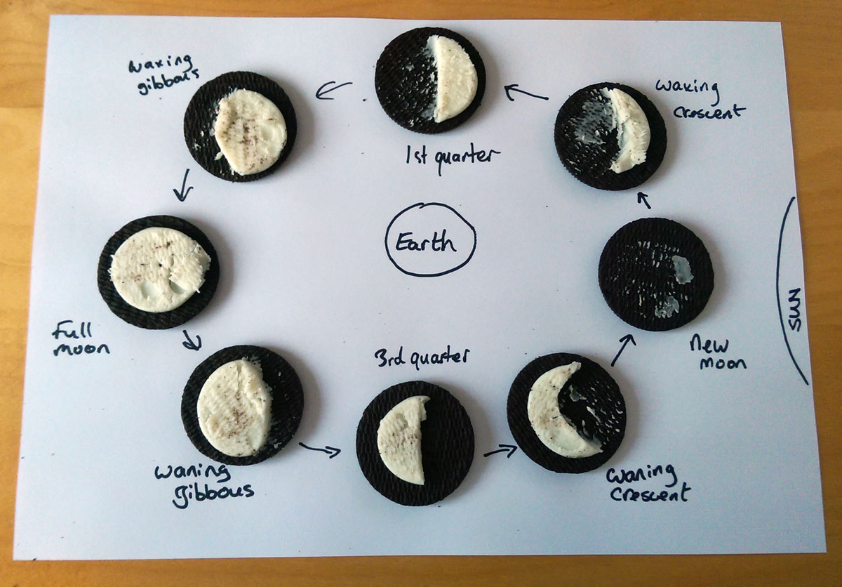 Oreo Cookie Moon Phases Worksheet
