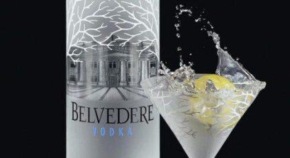 Belvedere-Challenge-480x262