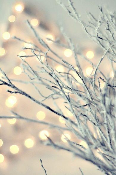 white-lights-tree
