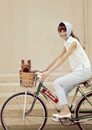 Audrey-Hepburn-bicycle