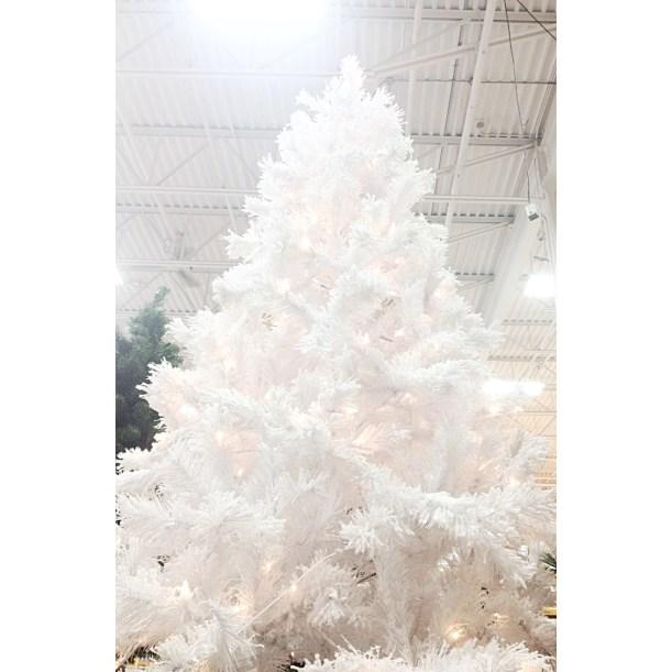 White-Cabana-Rona-white-Christmas-4