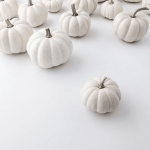 The Friday Five: White Pumpkins