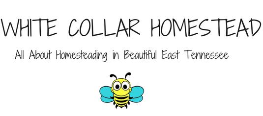White Collar Homestead