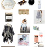 Girlfriend's Gift Guide $25 and Under