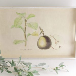 kitchen- pears- tray