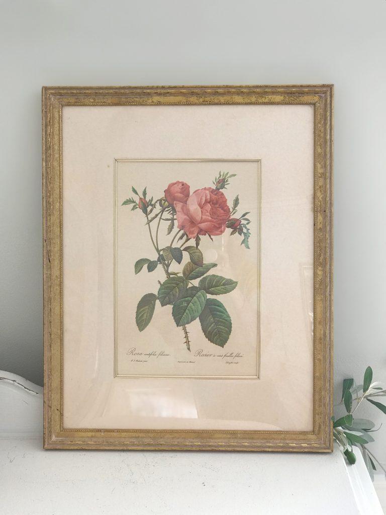art work- rose- floral art- vintage goods- J.C. Penney