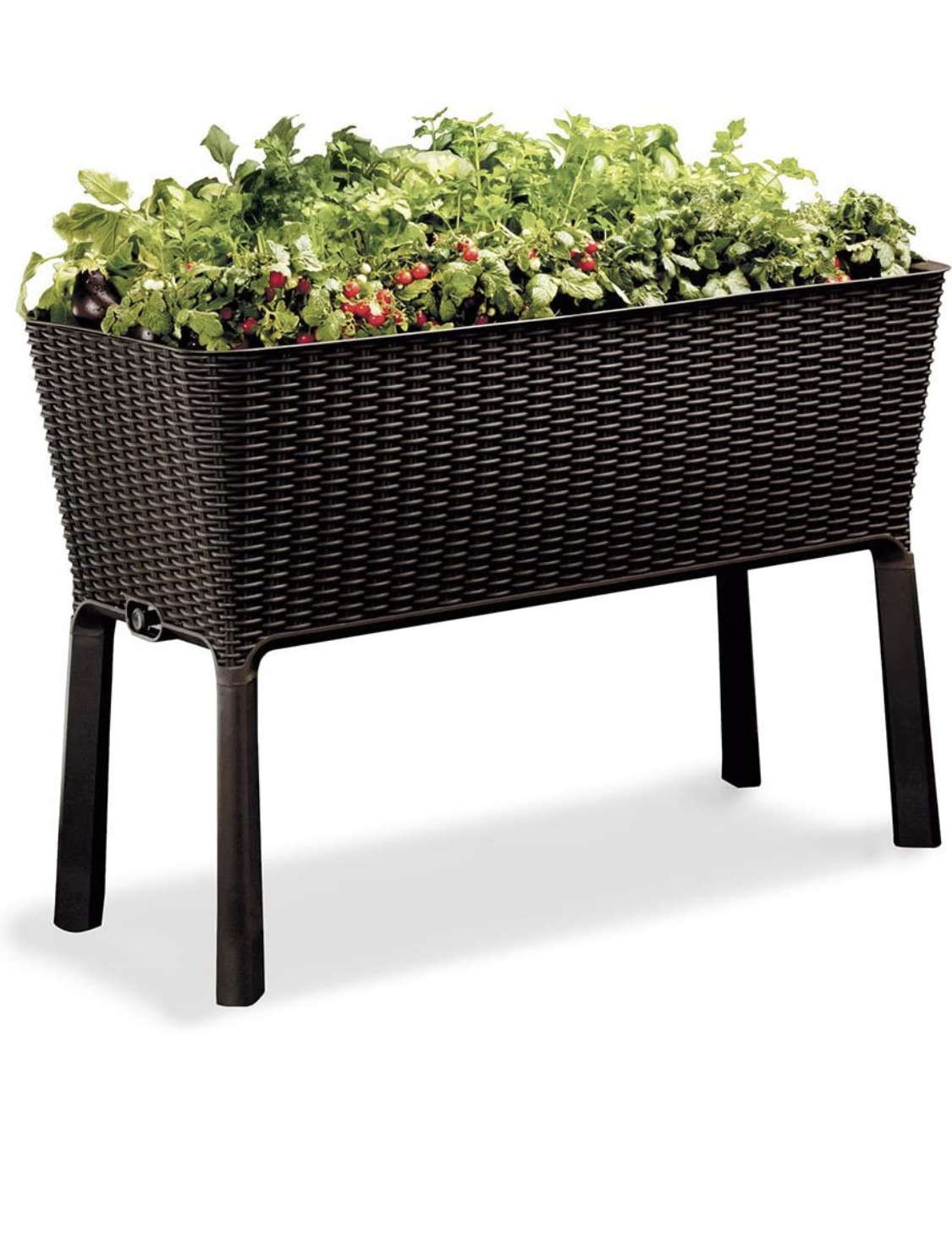 Raised Wicker Garden Bed