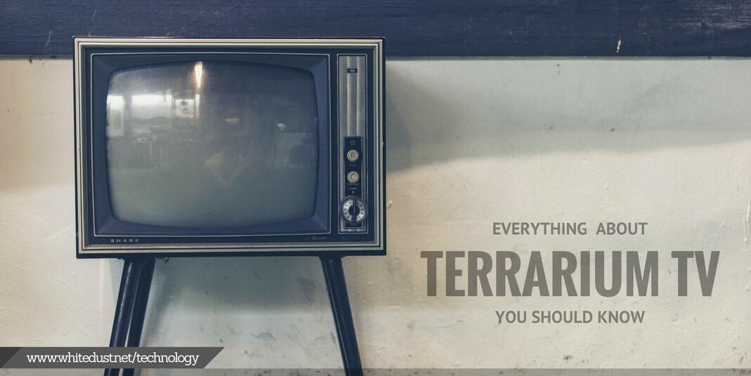 In Depth Terrarium App Review 2018 Whitedust