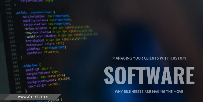 Managing Your Clients With Custom Software: Why Businesses Are Making The Move