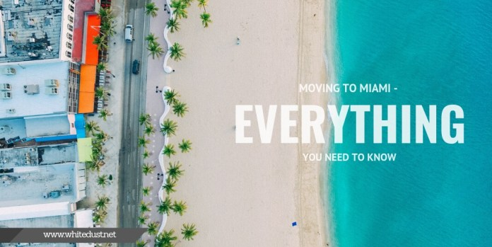 Moving to Miami - Everything You Need to Know