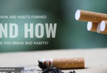 How Are Habits Formed and How Do You Break Bad Habits?