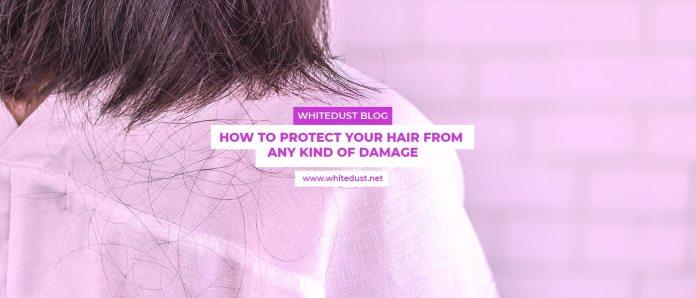 hair root