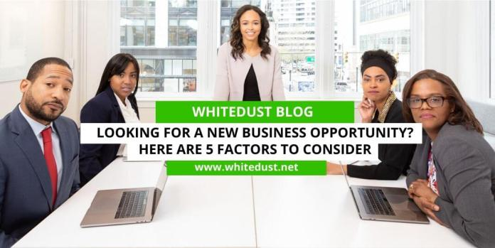 Looking For A New Business Opportunity? Here Are 5 Factors To Consider