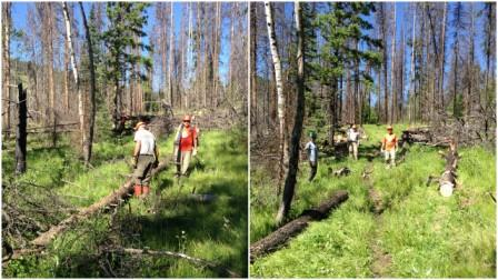 Trail Work - Before and After