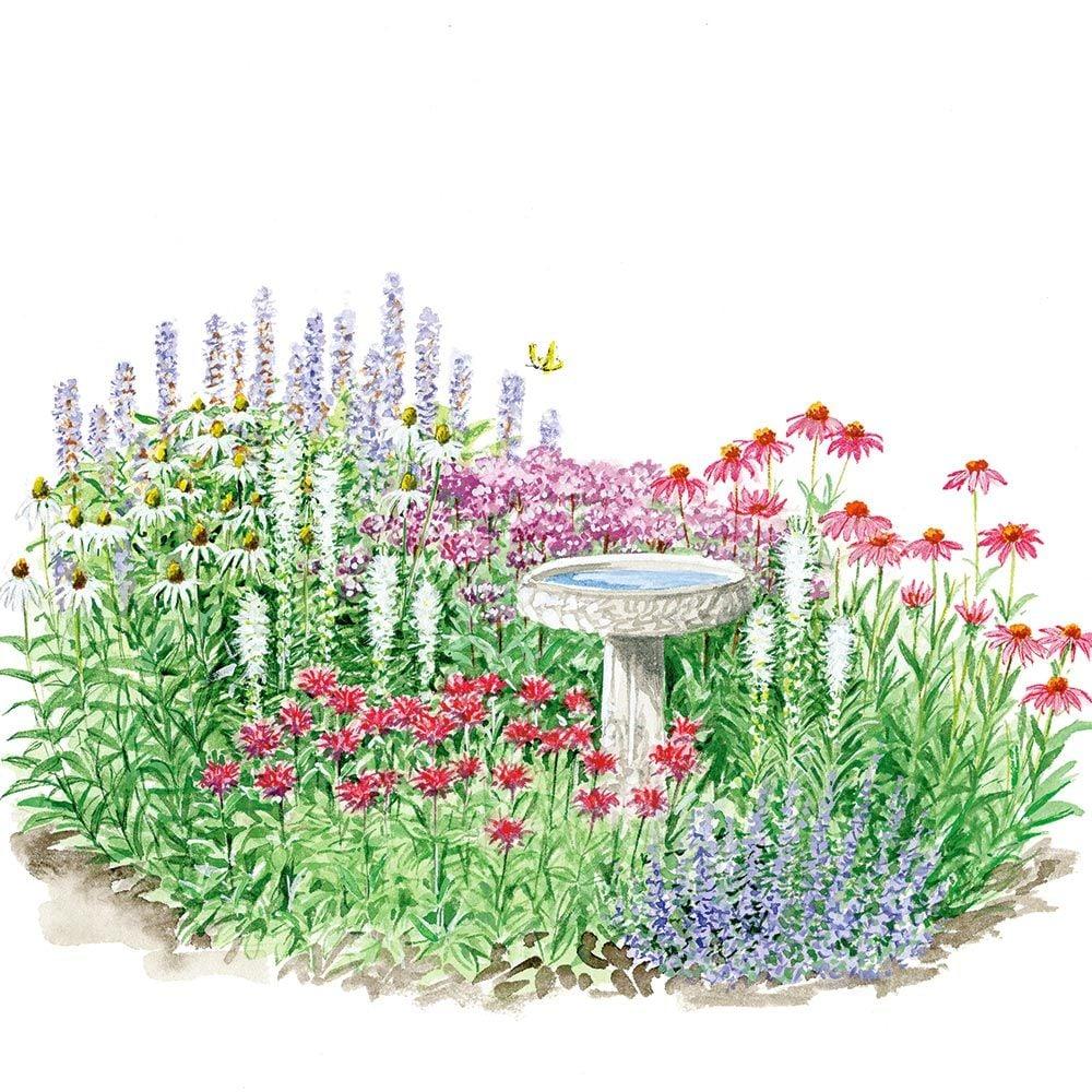 medium resolution of diagram of flower beds wiring diagram var diagram of flower beds