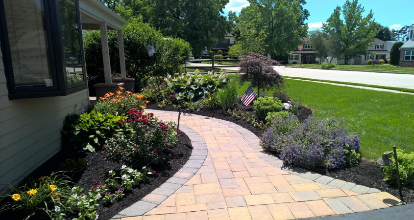 Yard Free Maintenance Front Landscaping