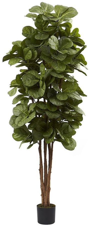 https://api.shopstyle.com/action/apiVisitRetailer?id=450423871&pid=uid7969-33980313-29 Fiddle Leaf Fig Tree, Top 10 Farmhouse Decor