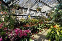 Threave Gardens: 10 Reasons To Choose This Scottish ...