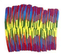 Rainbow Reflection by Heather Miller | WhiteRosesArt.com
