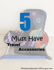 5 Must have travel accessories.