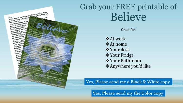 Grab your free printable of Believe. A great reminder to put at your desk or on your fridge.