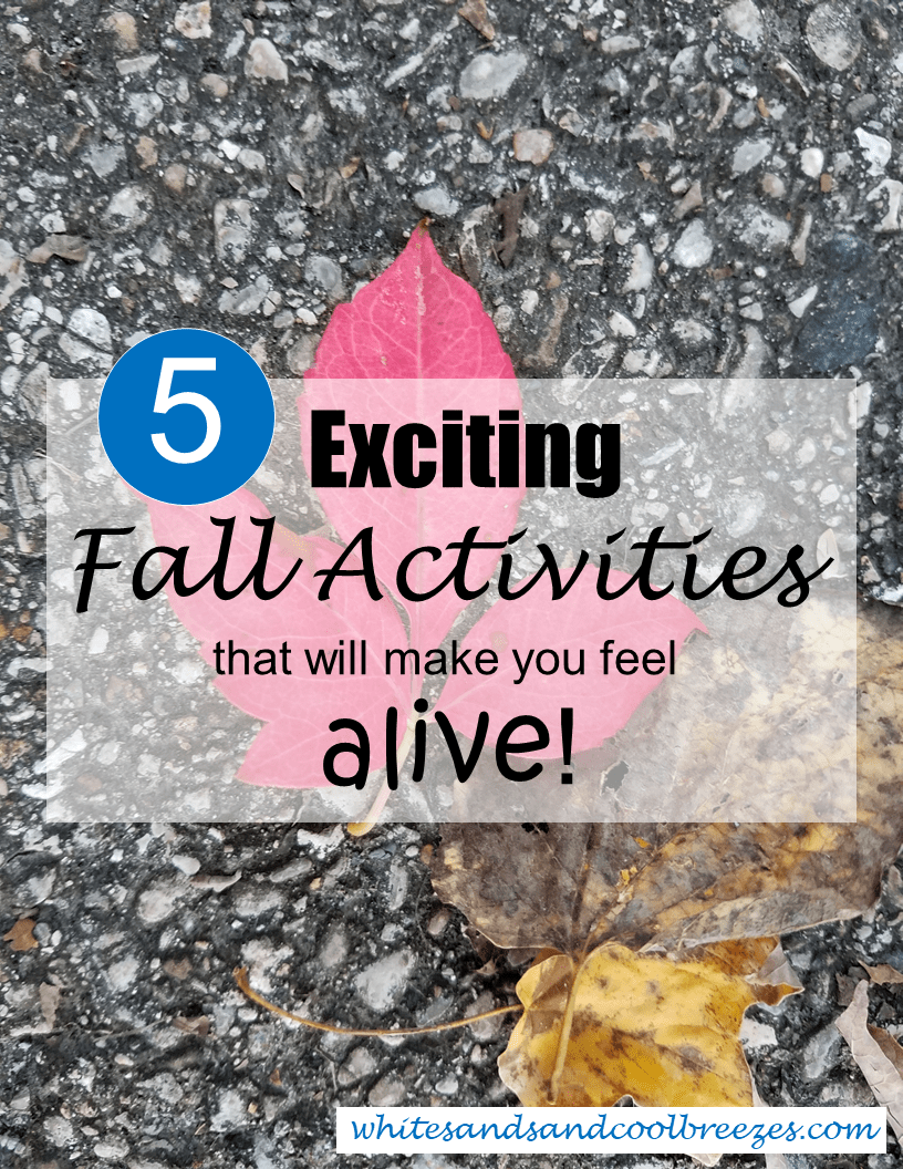 5 Exciting Fall Activities that will make you feel alive