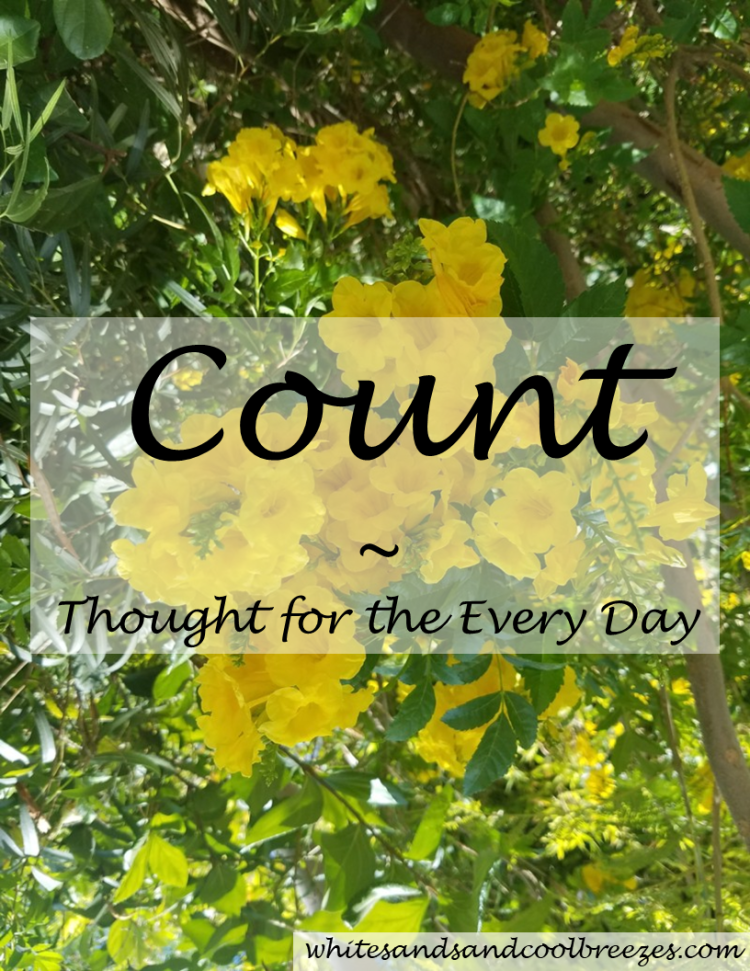 Count - Thought for the Every Day. When was the last time you counted your blessings? Need help getting started? It's not as hard as you think to count them!! Free Printable. #count #inspiration #countyourblessings