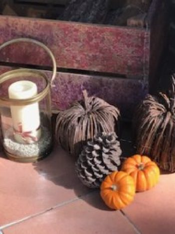 Autumn porch 1 e1505807543846 225x300 - Autumn a season of natural beauty and colour