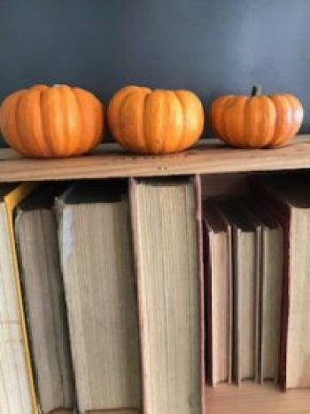 pumpkins 10 e1505807177869 225x300 - Autumn a season of natural beauty and colour