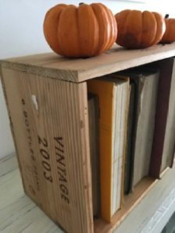 pumpkins 7 e1505806922829 225x300 - Autumn a season of natural beauty and colour