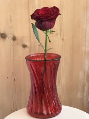 single red rose 1 e1505978664335 225x300 - The Rose - Vintage and Thrifty Styling for the Home
