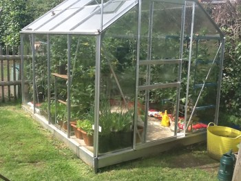 TOD greenhouse 1 300x225 - Renovate and Build - One step closer and a look back in time