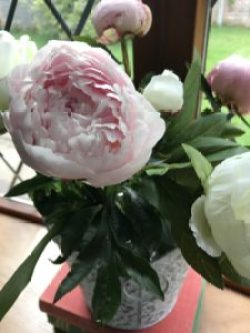 peonies 1 e1507271182291 225x300 - Flowers - Vintage and Thrifty Styling for the Home
