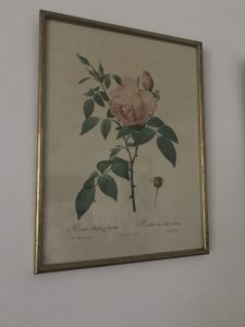 La Redoute 1 e1511191497417 225x300 - Paintings - Vintage and Thrifty Styling for the Home